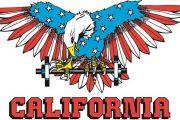 Saggio California Palestre
